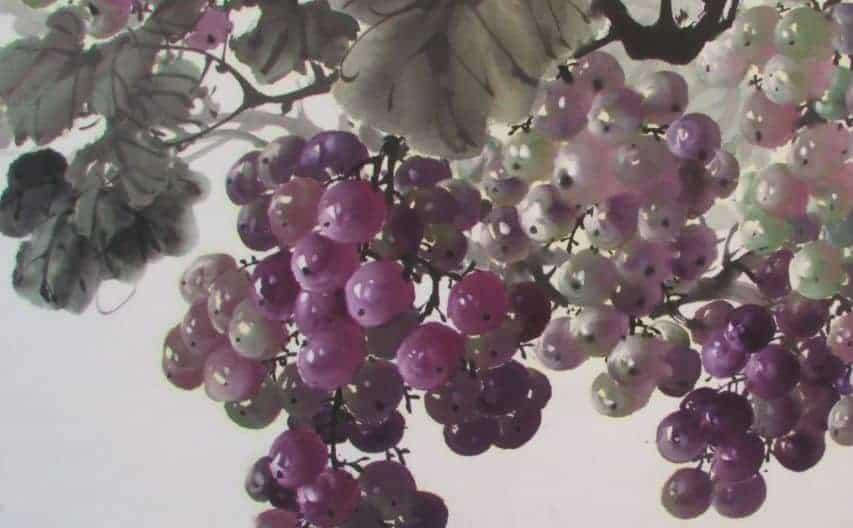 4 蘇峰男教授所畫的葡萄相當逼真